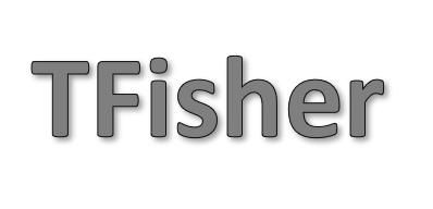 TFisher